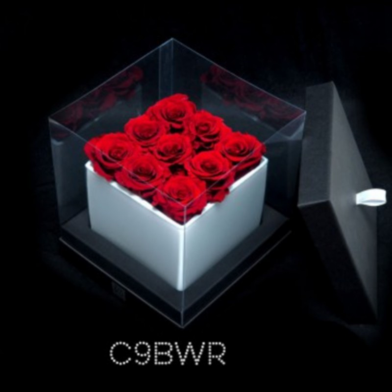 cube blanc 9 roses rouges boite noire