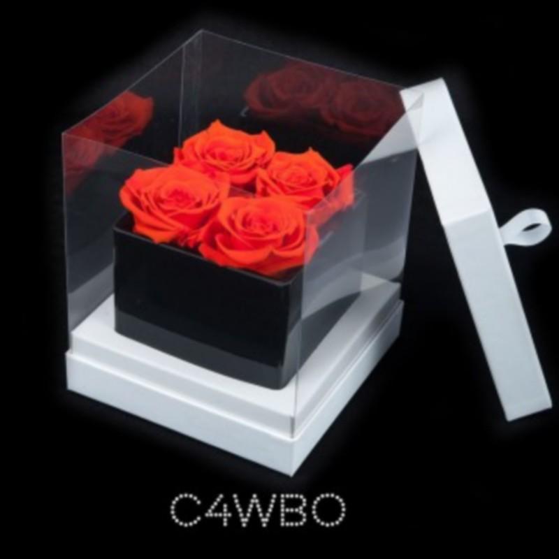 Cube Noir 4 Roses Oranges (boîte Blanche)