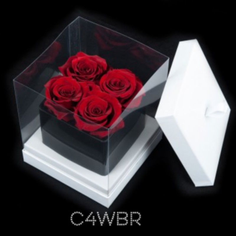 Cube Noir 4 Roses Rouges (boîte Blanche)