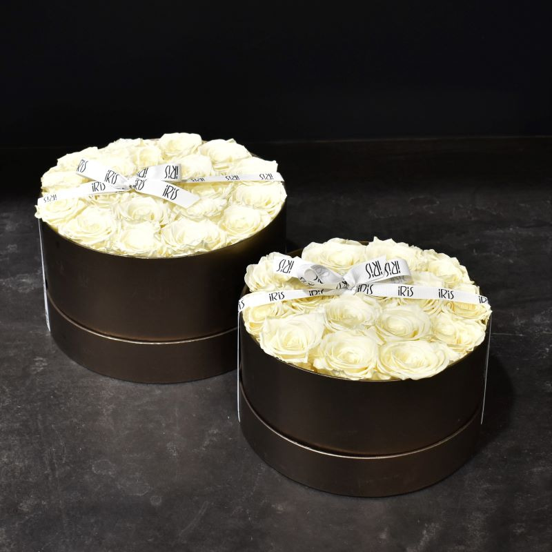 Flower Box Roses Crèmes Stabilisées